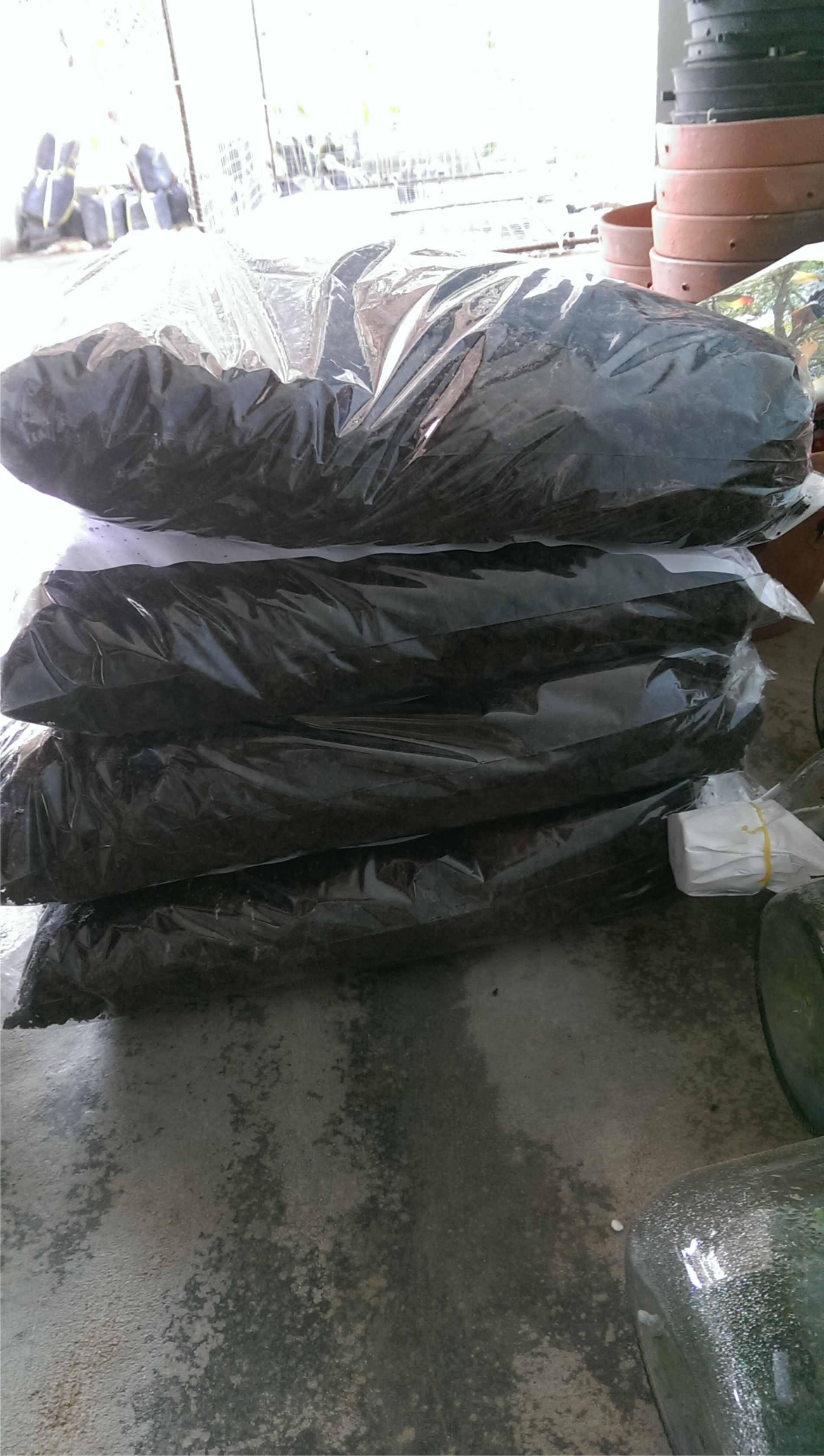 Phân trùn quế được đóng gói để đảm bảo độ ẩm cho sự phát triển của vi sinh vật và tránh mất đạm hữu cơ